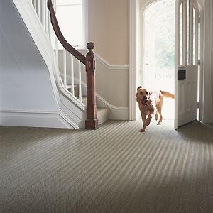 Carpets For Hallways 10 best hallway carpets hallway ideas allaboutyou seagrass hallway carpet best hallway carpets hallway decorating ideas allaboutyou sisterspd